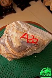NO.4385树化玉毛料A32